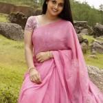 kalyani-in-amazing-saree1