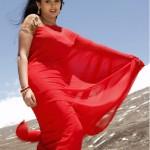 tamil_actress_kalyani_saree_94