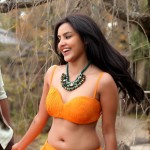 priya_anand_latest_photos-2
