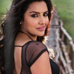 priya_anand_latest_photos-22