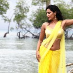 priya_anand_latest_photos-3