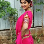 shilpa_shetty_in_traditional_look-5