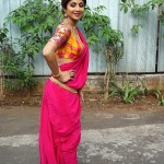 shilpa_shetty_in_traditional_look-6