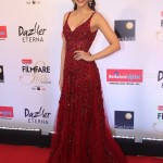 Bollywood Stars In Filmfare Glamour & Style Awards 2017