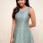 kalyani_priyadharshan-5