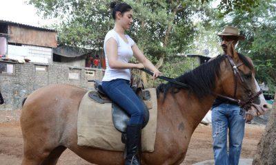 Tamanna Riding Horse